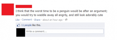 The worst time to be a penguin, after an argument, waddle away angrily